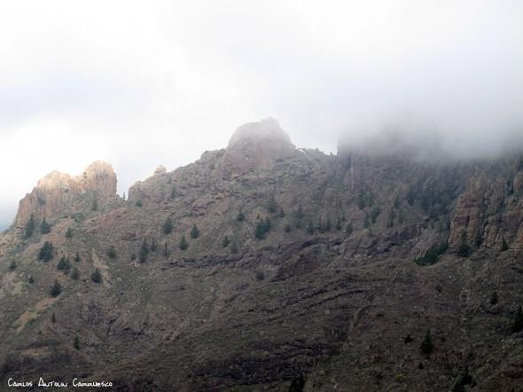 Adeje - Camino de Suarez - Tenerife - frailitos