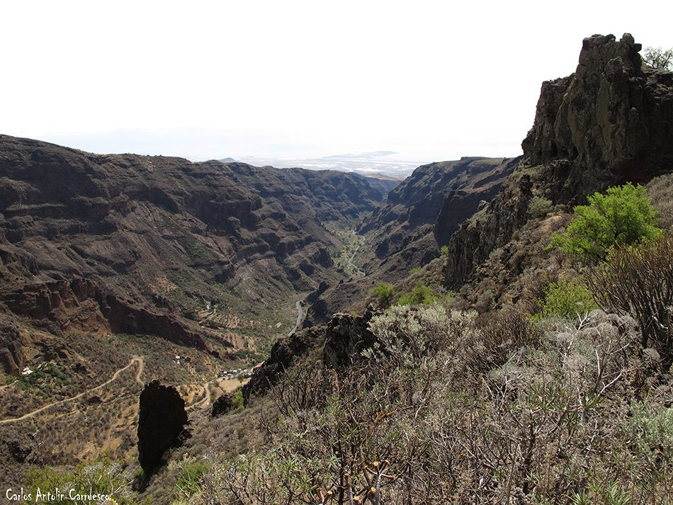 Lereta - Guayadeque - Gran Canaria - montaña de las tierras