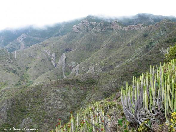 Igueste de San Andrés - Anaga - Tenerife
