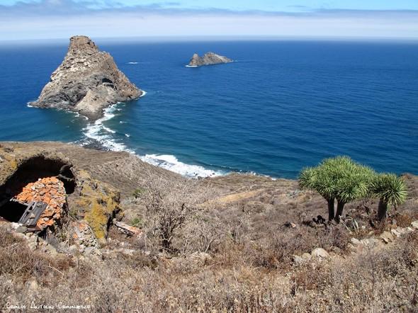 Anaga - Roque de Dentro - Las Breñas - Tenerife