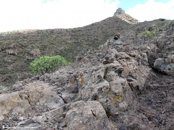 Camino de Suarez - Roque Imoque - Tenerife