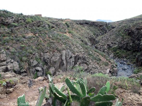 Barranco del Rey - Arona - Tenerife