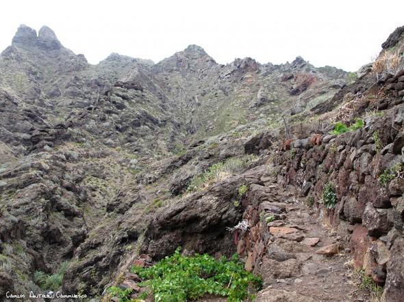 Barranco de Afur - Afur - Anaga - Tenerife