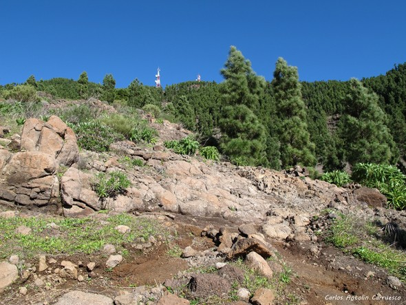 Santiago del Teide - Teno Cumbre de Bolico - Tenerife