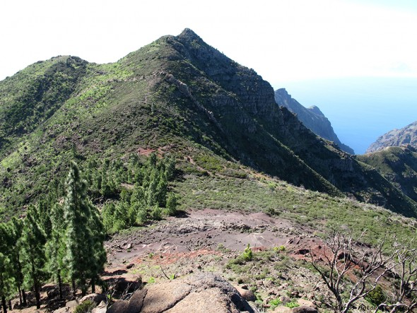 Santiago del Teide - Teno - Cumbre de Bolico - Tenerife