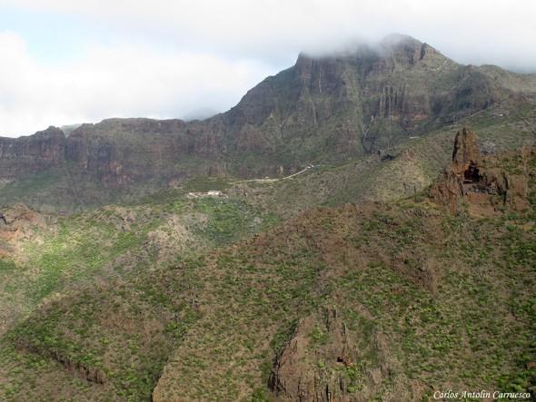 Barranco El Natero - Casas de Araza - Teno - Tenerife