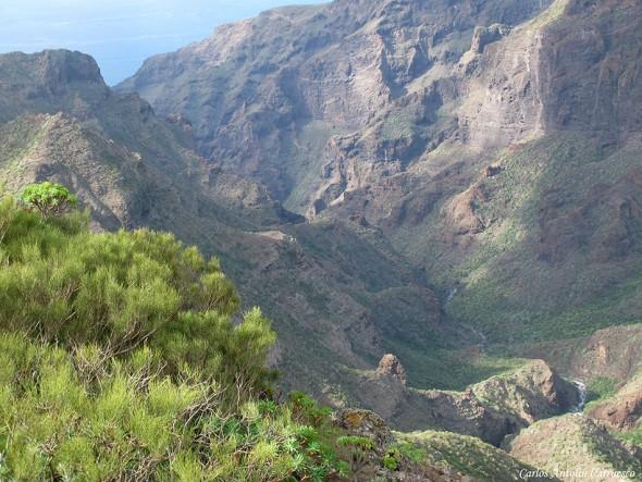 Barranco El Natero - Teno - Tenerife