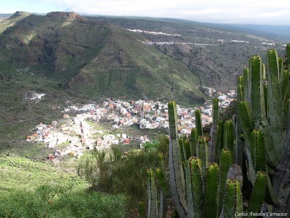 Tamaimo - Montaña de Guama - Tenerife