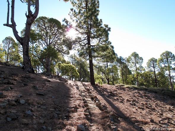 sendero Nº31 - P.N. del Teide - Tenerife
