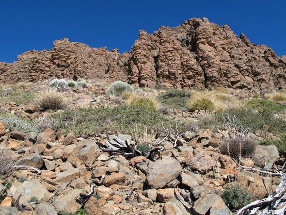 Roque de Los Almendros - P.N. del Teide - Tenerife