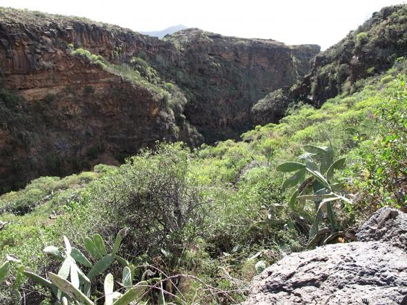 Barranco de La Orchilla - Camino Real del Sur - Tenerife