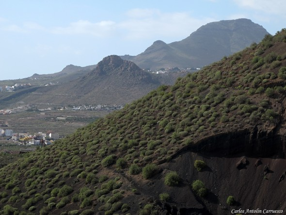 SL-TF-231 - Tenerife