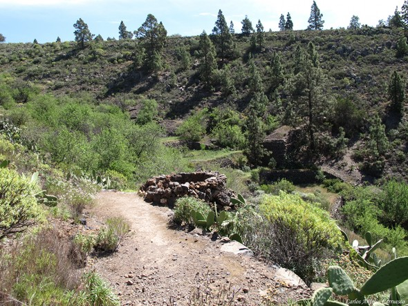 Camino de La Campana - Guía de Isora - tenerife