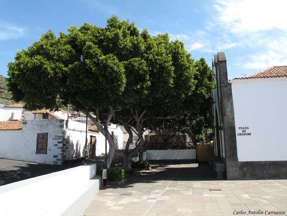 Plaza de Chirche - Tenerife