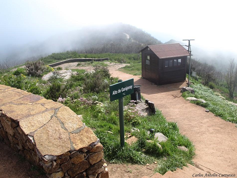 Alto de Garajonay (1.487 metros de altitud) - La Gomera