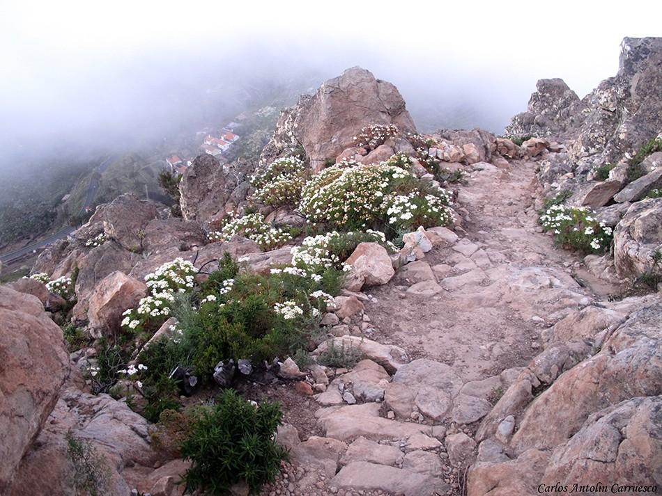 IChipude - La Fortaleza - La Gomera