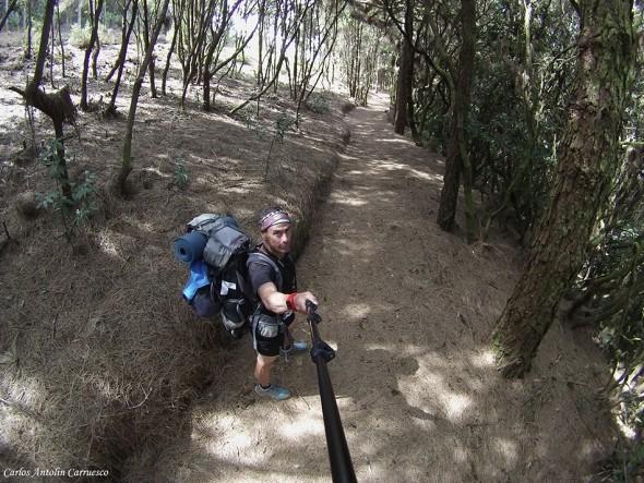 Ultramaratón TRANSVULCANIA 2015 - isla de La Palma