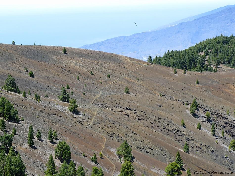 Nambroque - ruta de los volcanes - La Palma