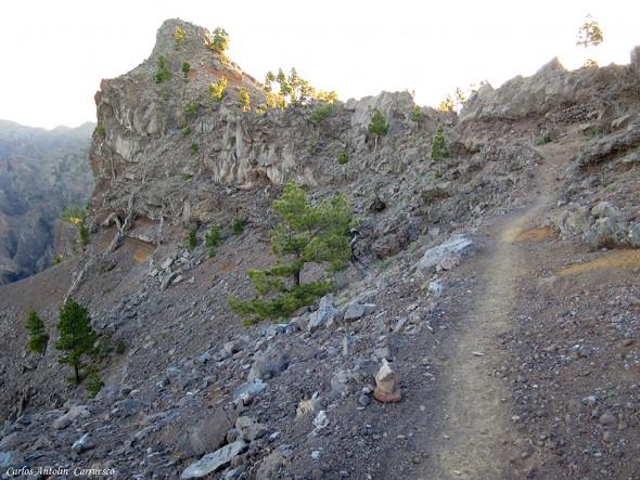 Ultramaratón TRANSVULCANIA 2015 - La Palma