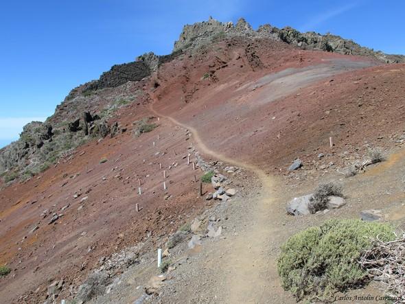 La Crestería - TRANSVULCANIA 2015 - La Palma - Pared de Roberto