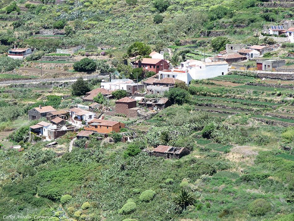 Los Carrizales - Carrizal Alto - Teno