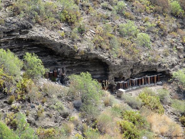 Barranco del Infierno - Adeje - Tenerife - panales de abejas