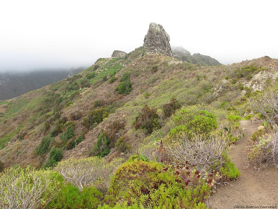 Roque de Amogoje - Anaga - Tenerife