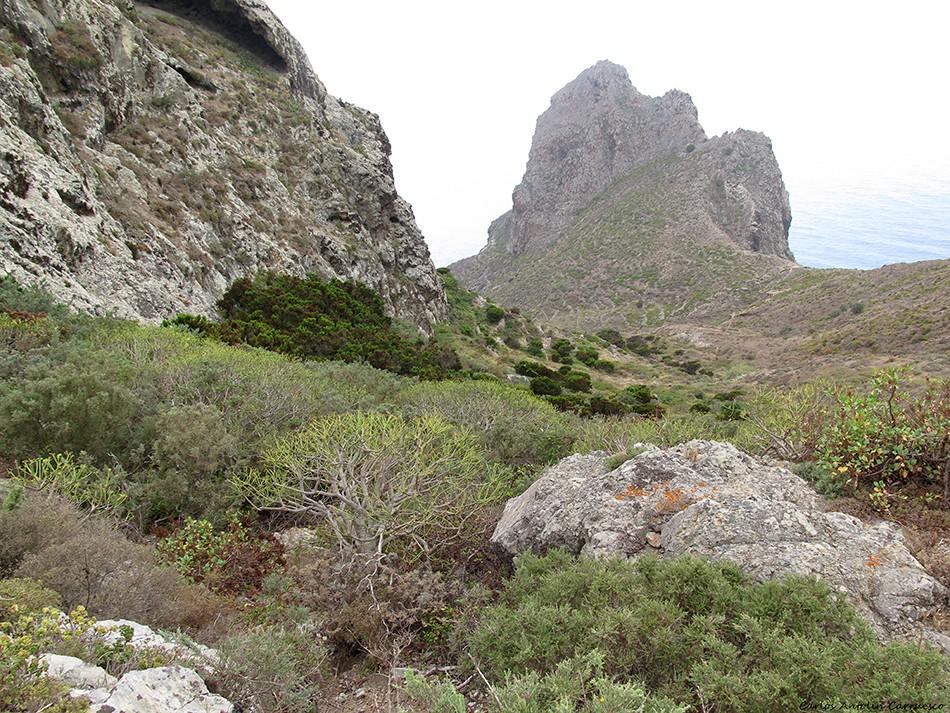 Roque de Las Ánimas - Anaga - Tenerife