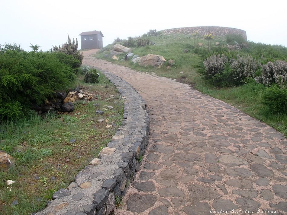 Alto de Garajonay - P.N. de Garajonay - La Gomera