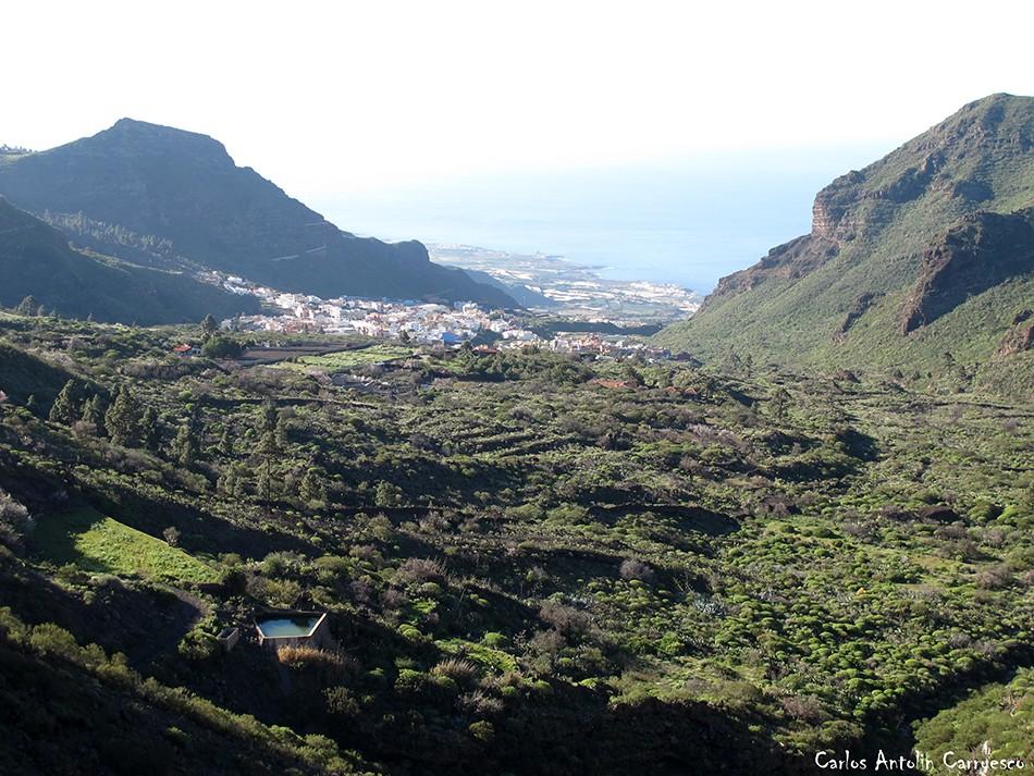 El Molledo - Parque Rural de Teno - Tenerife - tamaimo