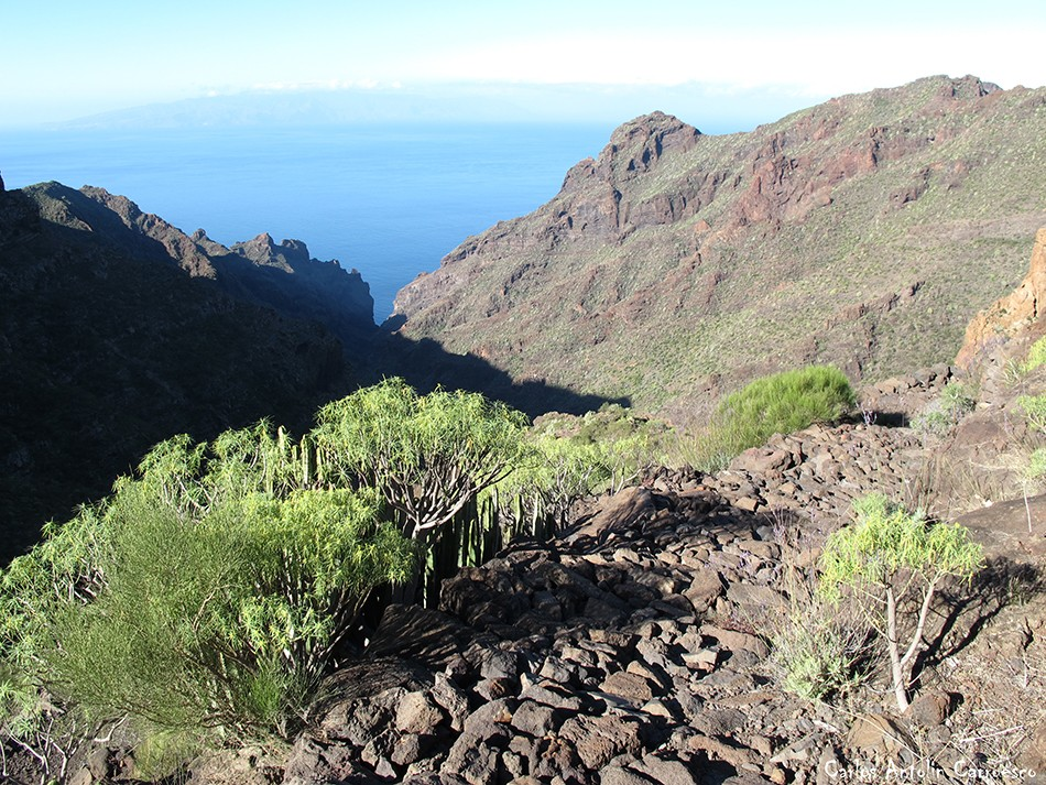 Barranco Seco - Tenerife