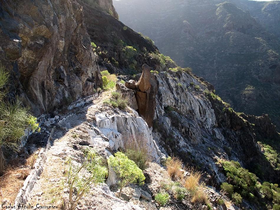 Atarjea del Sauce - Barranco Seco - Tenerife