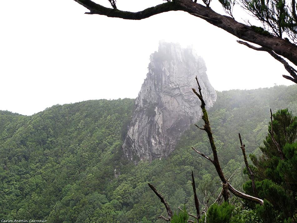 El Pijaral - Anaga - Roque Anambro - Tenerife