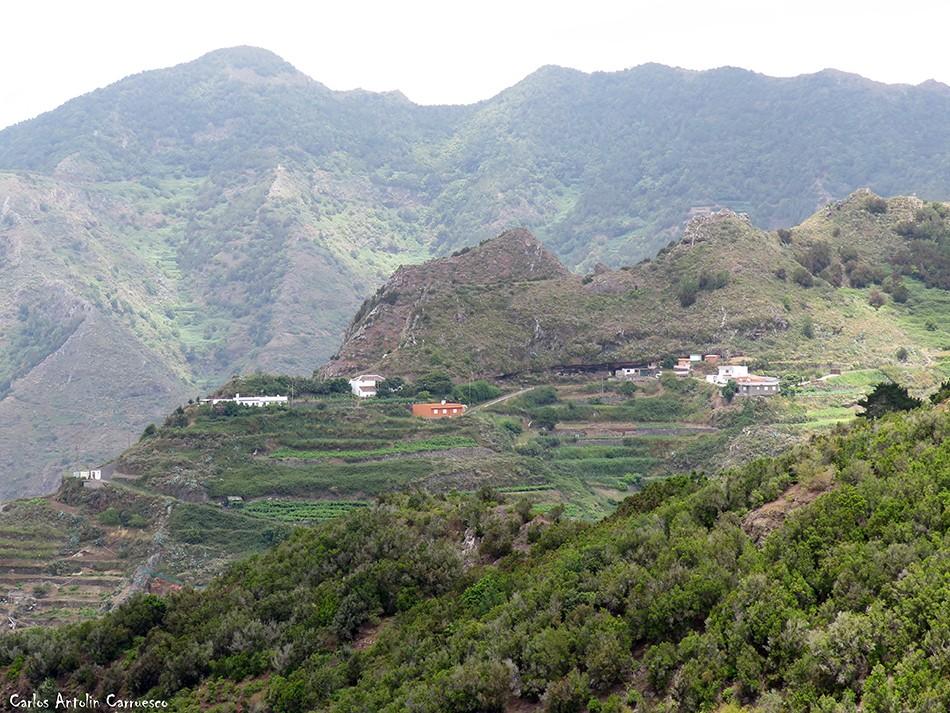 Anaga - Tenerife - bejía