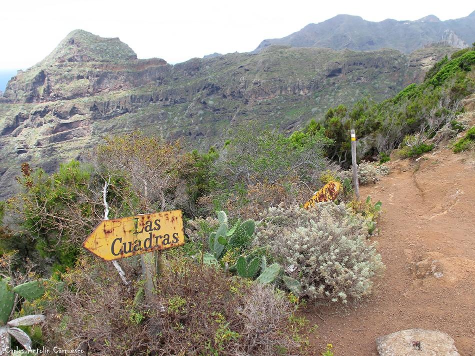 Las Cuadras - Anaga - Tenerife