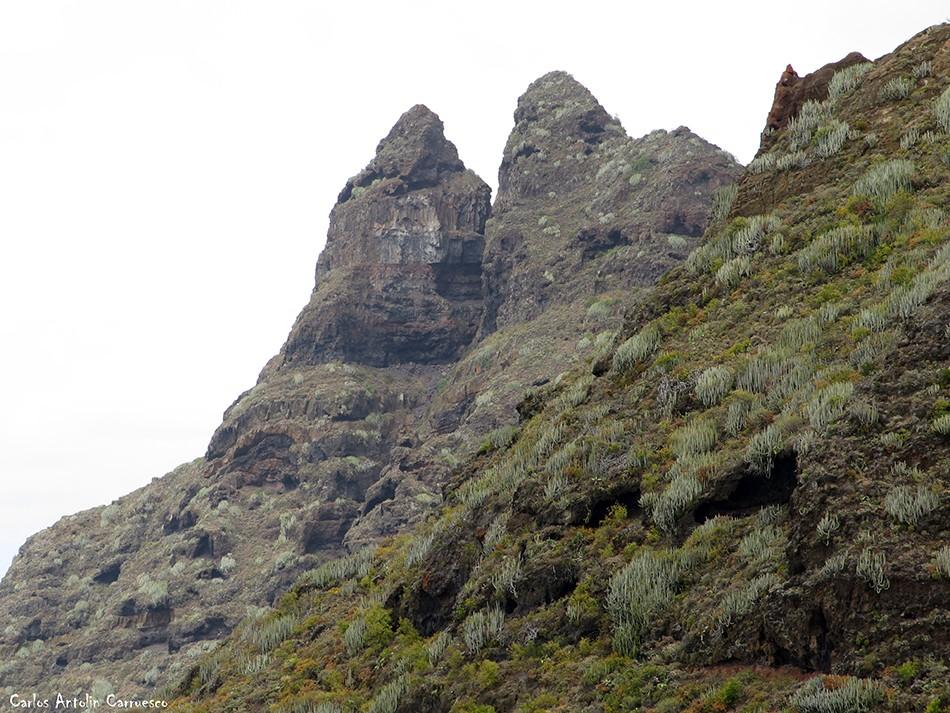 Roque Dos Hermanos - Punta del Hidalgo - Anaga - Tenerife
