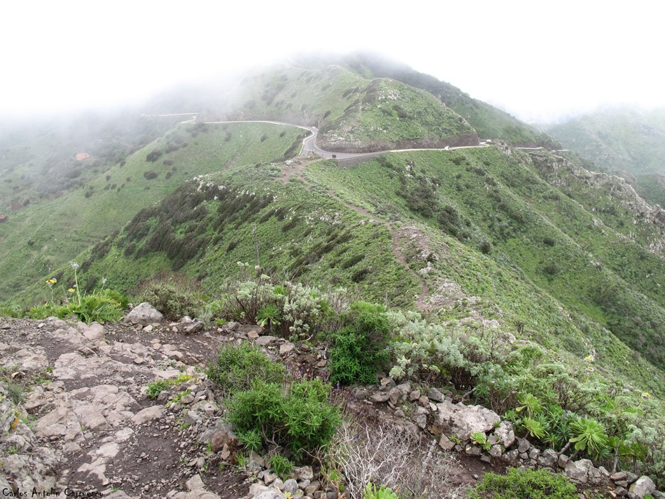 Cumbres de Baracán - Teno - Tenerife - mirador de tabaiba - masca