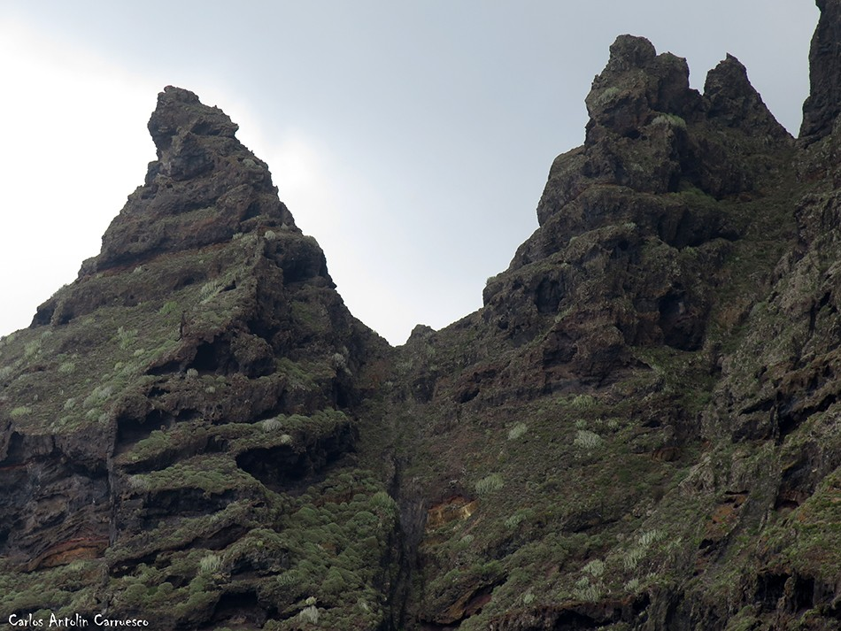 Picacho de Magín