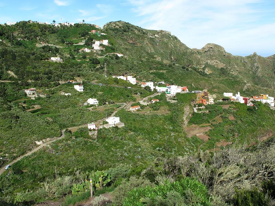Lomo de Las Bodegas - Anaga - Tenerife