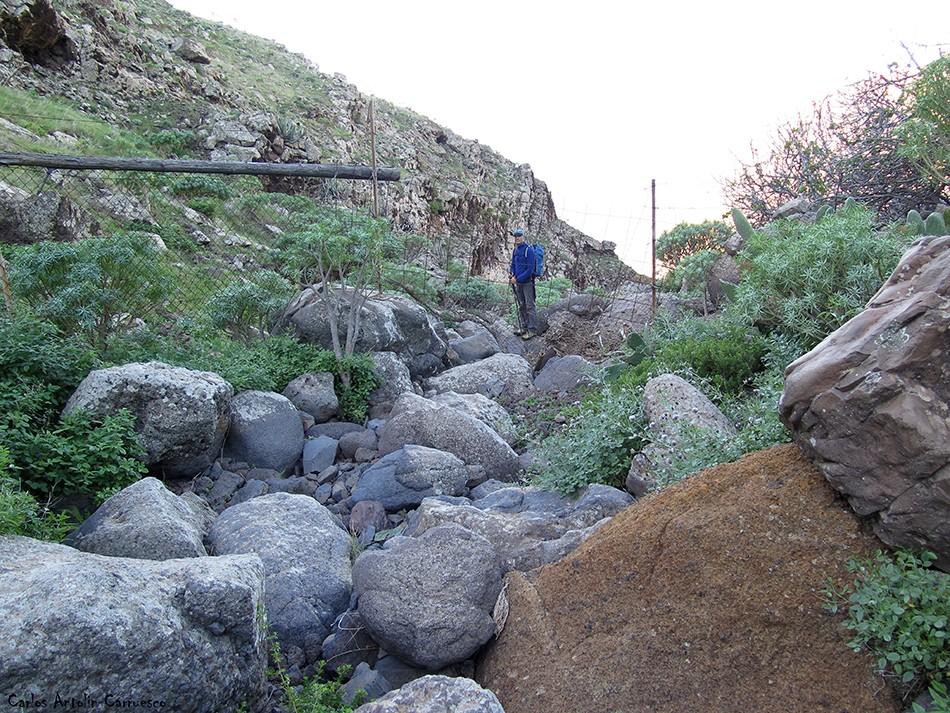Teno Alto - Los Poleos - Tenerife