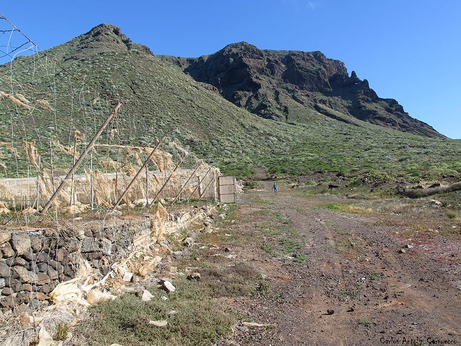 Los Gigantes - Punta Teno - Tenerife