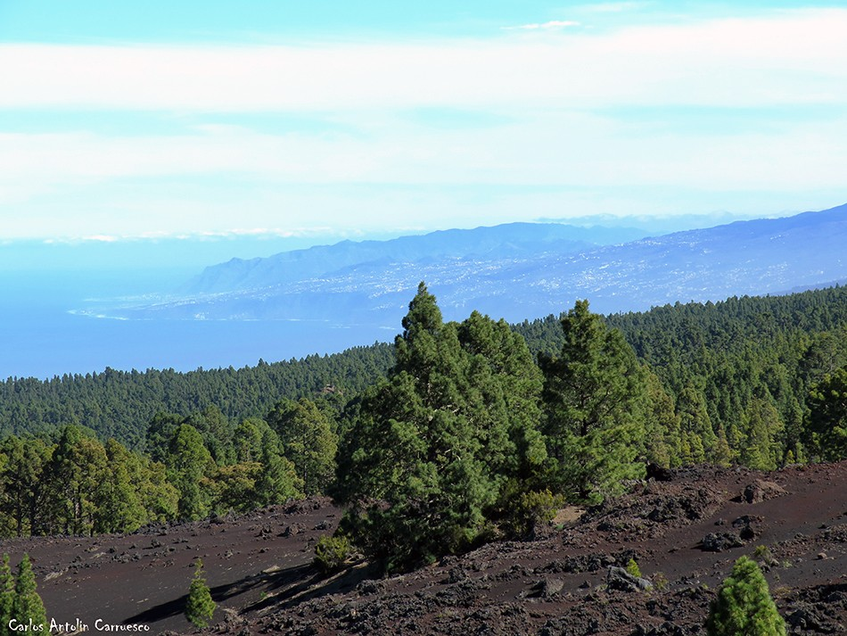 Garachico - Tenerife - la orotava - corona forestal