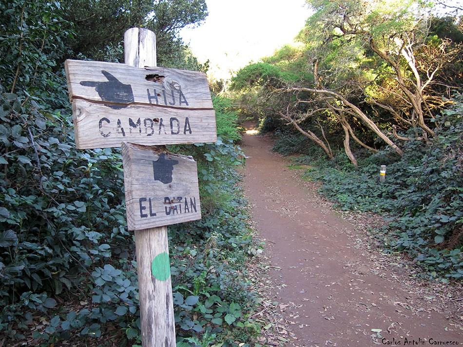 Cruz del Carmen - Anaga - Tenerife
