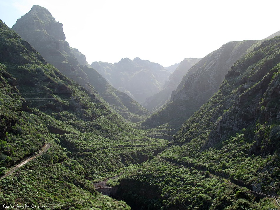 Barranco Seco - Anaga - Tenerife