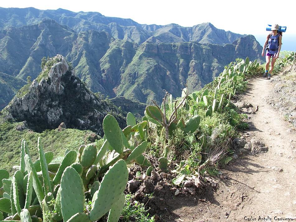 Chinamada - Anaga - Tenerife - Roque de los Pinos