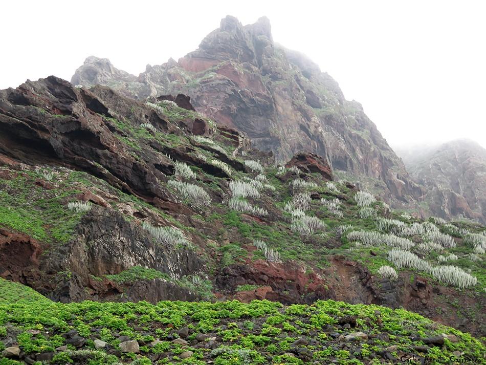 Barranco de Afur - Anaga - Tenerife - Playa de Tamadiste - roque marrubial