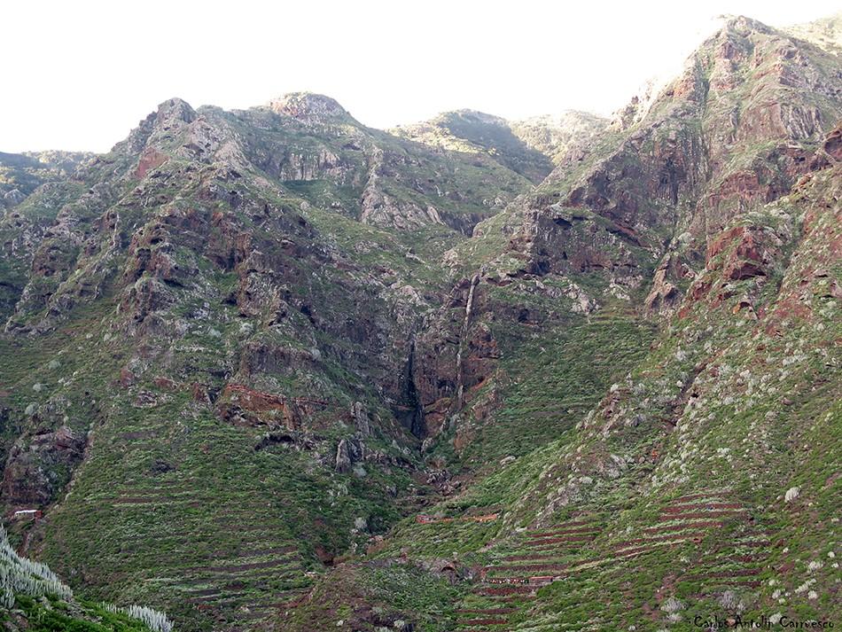 Cumbres de Taborno - Palo Hincado - Anaga