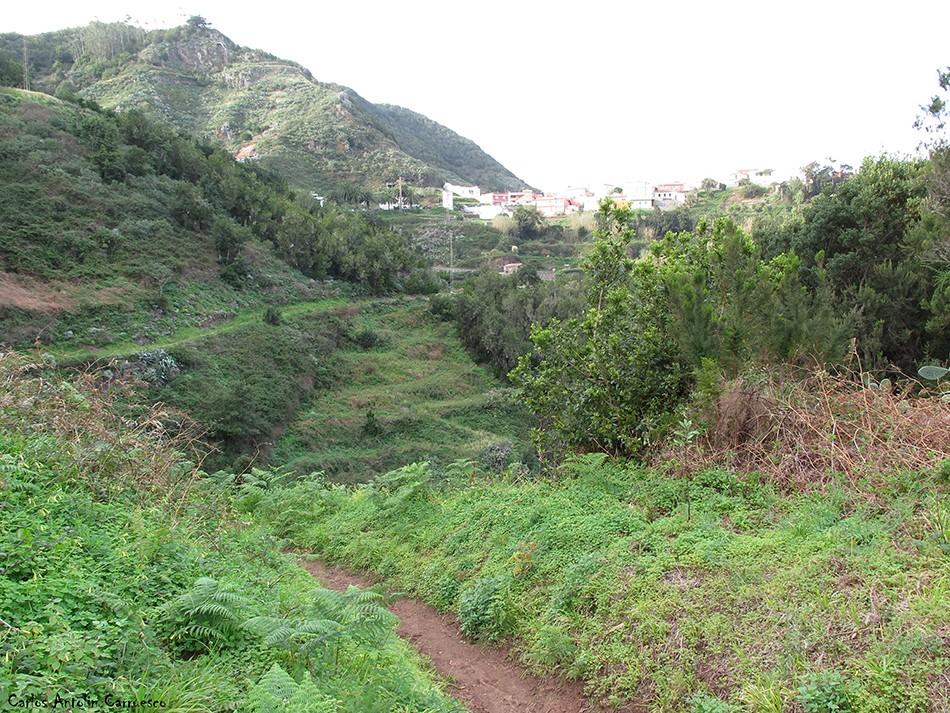 Barranco de Taborno - Anaga - Tenerife - las carboneras