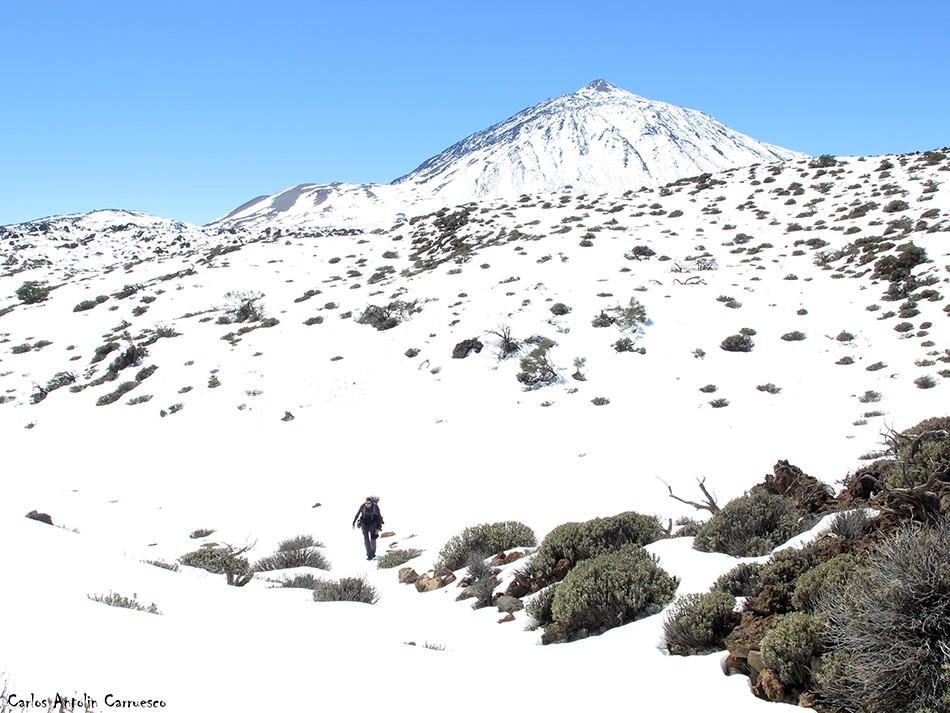 El Portillo - P.N. del Teide - Tenerife