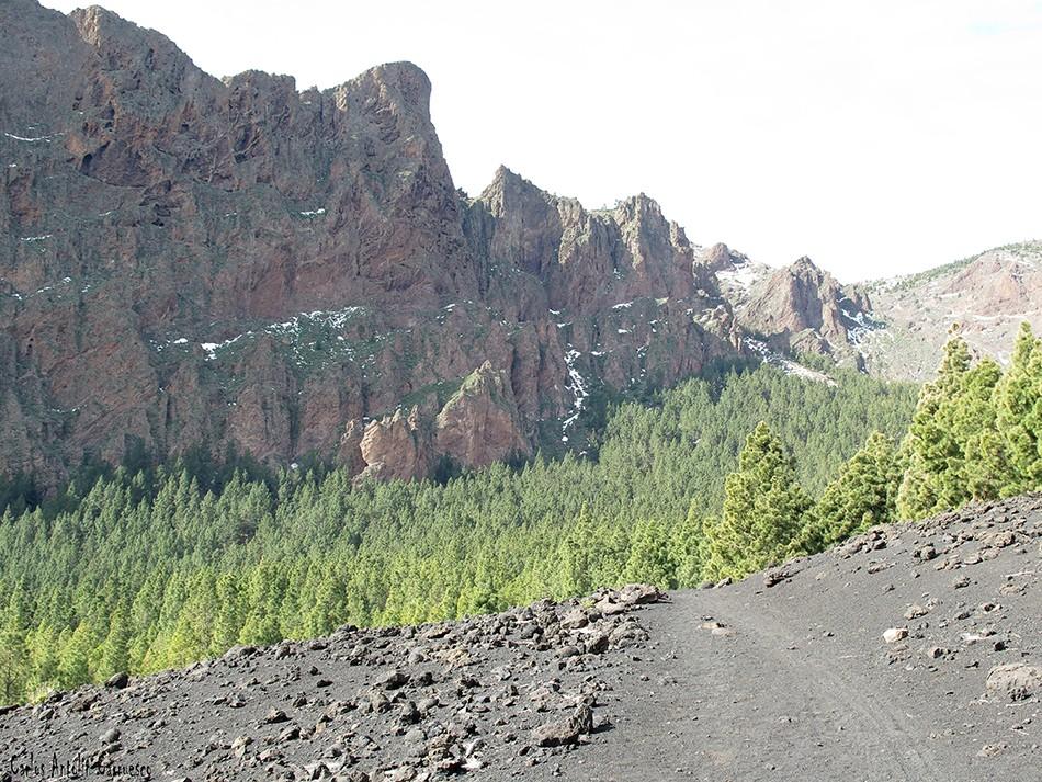 Caldera de Pedro Gil - Tenerife - Cho Marcial - Pico del Valle